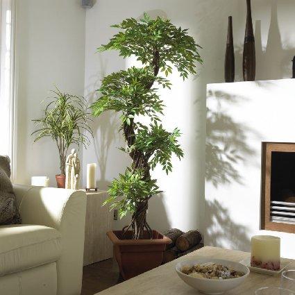 Lieber echte oder k nstliche pflanzen pretty little page for Decoracion con plantas en living